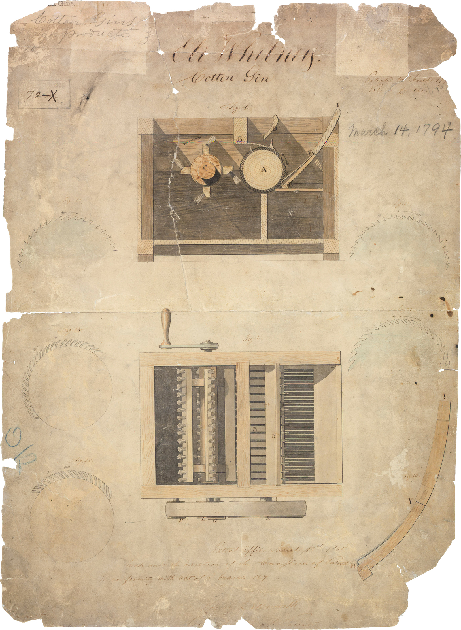 Cotton Gin and Eli Whitney