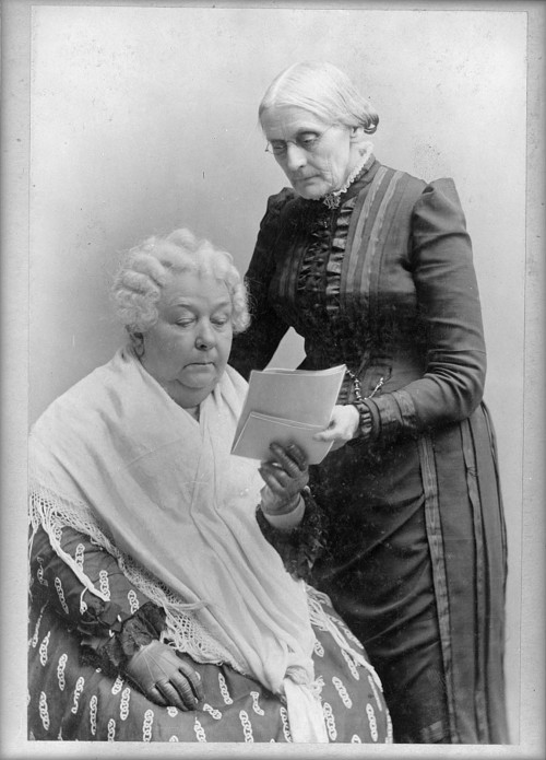 "Susan B. Anthony and Elizabeth Cady Stanton maintained a strong and productive relationship for nearly half a century as they sought to secure political rights for women. While the fight for women's rights stalled during the war, it sprung back to life as Anthony, Stanton, and others formed the American Equal Rights Association. ""[Elizabeth Cady Stanton, seated, and Susan B. Anthony, standing, three-quarter length portrait],"" between 1880 and 1902. Library of Congress, http://www.loc.gov/pictures/item/97500087/."