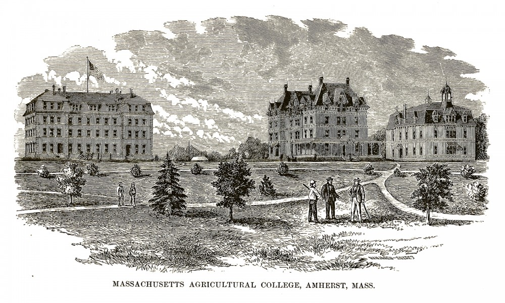 "Massachusetts Agricultural College (now known as University of Massachusetts Amherst) was one of many colleges founded through the Federal Morrill-Land Grant Colleges Act. ""Massachusetts Agricultural College, Amherst, Mass. 1879,"" 1880. Wikimedia, http://commons.wikimedia.org/wiki/File:Mass_Aggie.jpg."