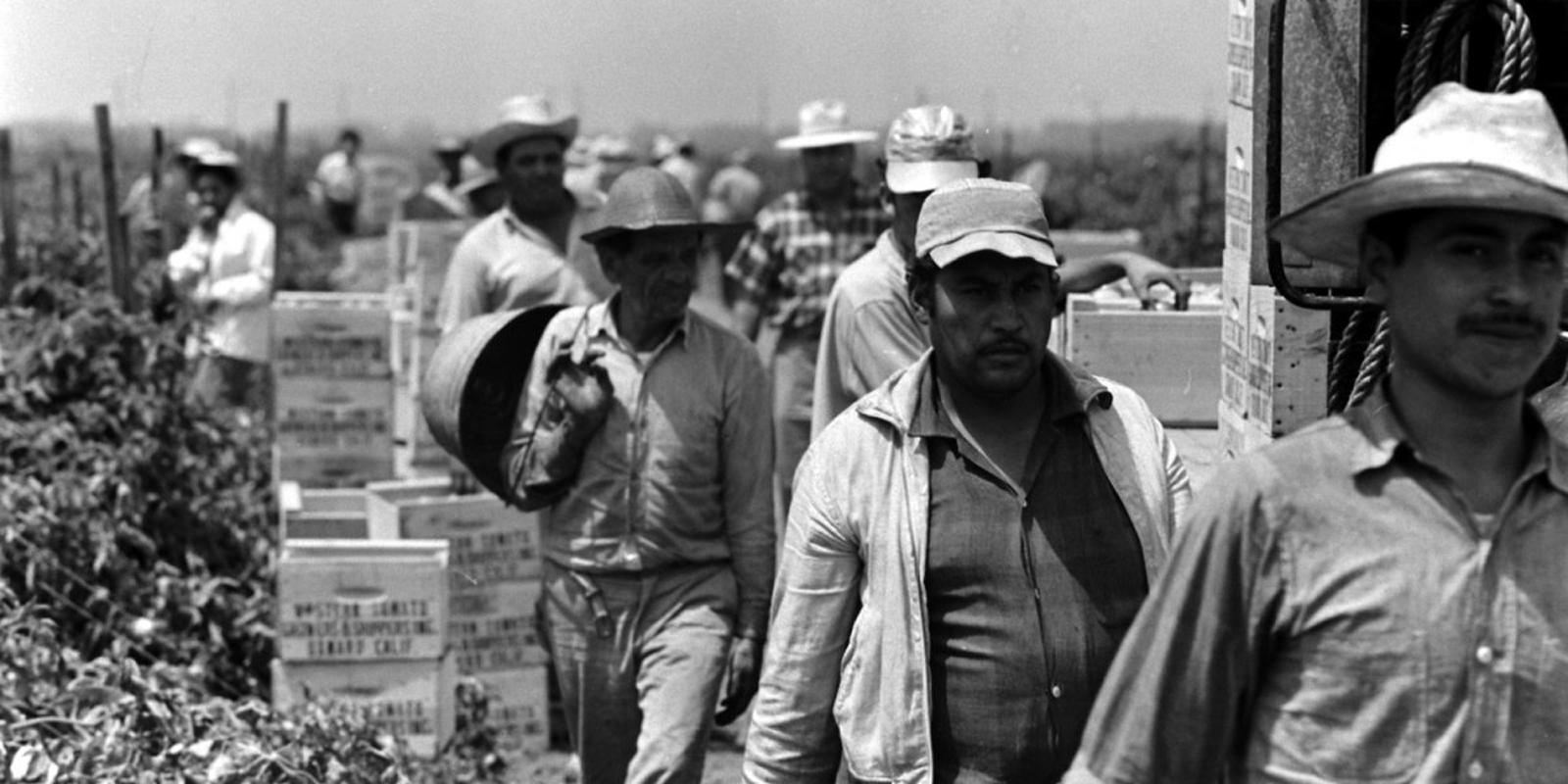 Migrant Farm Workers, 1959, Michael Rougier—Time & Life Pictures/Getty Images. Via Life.